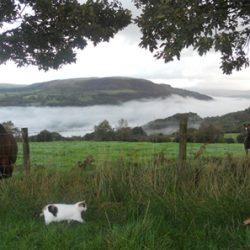 Best Family Breaks UK | Tan Yr Eglwys | Countryside Breaks for Couples | Relaxing Weekend Breaks UK | Cottage Getaways Wales